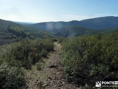 Atazar - Meandros Río Lozoya - Pontón de la Oliva - Senda del Genaro;solana de ávila